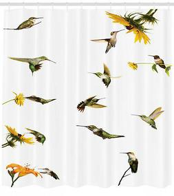 Collection of Hummingbirds Sunflowers Floral Decor Bird Imag