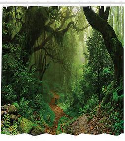 Forest in Nepal Trekking Branches Mist Road Outdoors Theme S