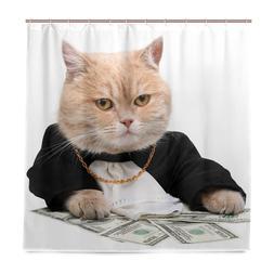 Funny Cat Counts Money <font><b>Shower</b></font> <font><b>C