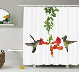 Ambesonne Hummingbirds Decorations Shower Curtain Set, Two H