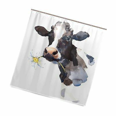 milk cow with a daisy flower shower