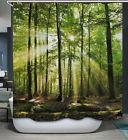 Nature Trees Sunlight Fabric SHOWER CURTAIN 70x70 w/Hooks Fo