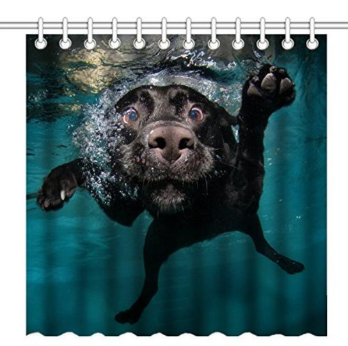 shower curtain labrador retriever dog