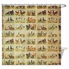 CafePress - Vintage Barnyard Birds - Decorative Fabric Showe