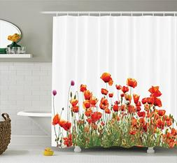 Ambesonne Poppy Decor Collection, Popeyes Springfield Countr