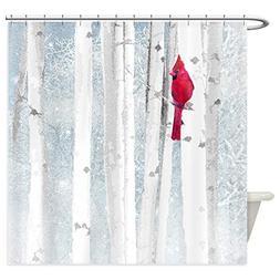 red cardinal bird snow birch
