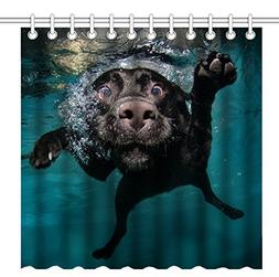 Wknoon 72 x 72 Inch Shower Curtain,Funny Black Labrador Retr