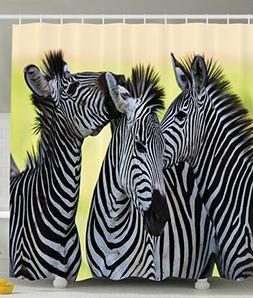 Ambesonne Wildlife Animal Decor Collection, Zebras Safari Wi