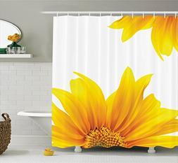 Ambesonne Yellow Decor Collection, Flourishing Sun Flower De